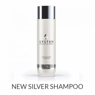 NEW Silver Shampoo by System Professional