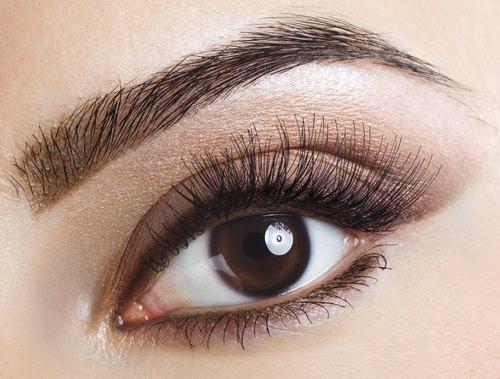 Eyebrow & Eyelash Treatments, Hair & Beauty Salon. Dundee