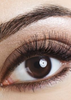 eyelashperm